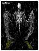 bones angel hc240