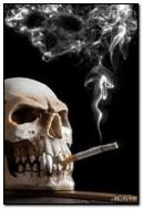 The Skull With Cigarette