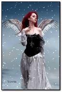 anjo de inverno