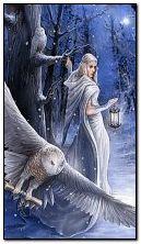 Zimowa fantazja