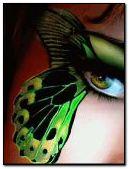 나비 아이