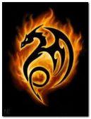 Dragon 2 : 240 x 320