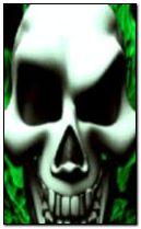 skull 240x400