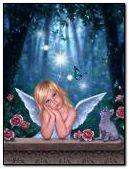 LIl Fairy