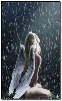 Thiên thần mưa
