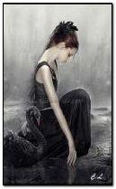 Lady et Black Swan