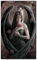 Stokes angel