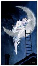 Nocna fantazja