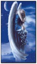 孤独的天使+