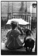 Seulement heureux quand il pleut