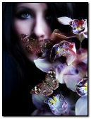 Frau mit Glamour-Schmetterlingen