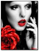 beauty with a rose