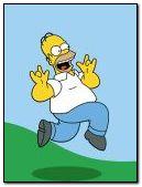 Homer jump