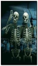 Lustige Skelette