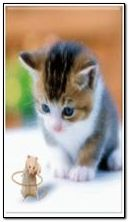 Lustiger Hamster