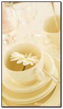 teas with chamomile