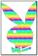 Rainbow Playboy Logo