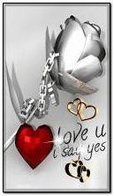 love 85