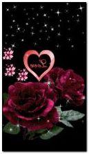 Liebe 66