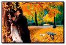 72 Autumn Kiss