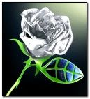 silver rose flower