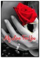 tình yêu của tôi dành cho bạn