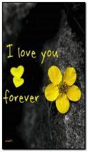 ؟ أحبك للأبد