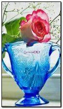 animé, tasses et rose