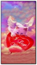 love angel cat