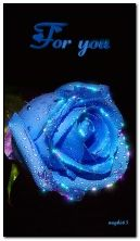 Blue rose for you.