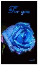 Blue rose untuk anda.