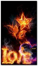 cinta api