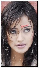 Neha Sharma HDO404