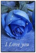 Mi amor es azul