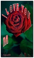 NEW animated rose HDi103