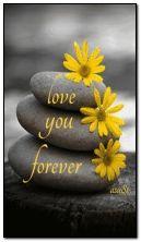 أحبك للأبد