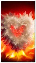 Heart is on fire