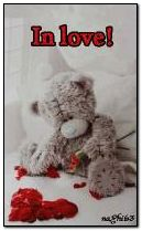 Teddy in love