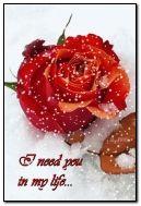preciso de você na minha vida
