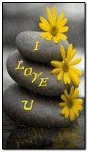 sarı aşk