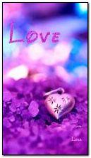 tình yêu màu tím
