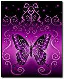 Butterfly Violet
