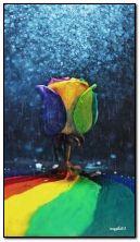 kolorowa róża w deszczu