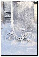 냉동 자전거