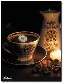 Coffee and chamomile
