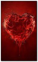 heart 240x400