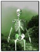 SKULL,DEATH,ANIMATED,Image,COOL