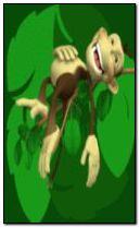 monkey 240x400
