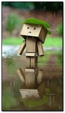 Danbo in rain