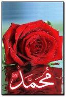 Prophète Hazrat Muhammad